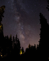 Starry Night at Tahoe (KieraJo) Tags: wide angle canonef24mmf14liiusm l lens canon 5d mark 3 iii 5d3 fullframe dslr lake tahoe pines pine trees beautiful camping scenery california nevada sky stars panorama milky way astrophotography silhouettes