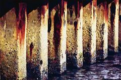 Under the Pier (D()MENICK) Tags: bestofweek1 bestofweek2 bestofweek3 bestofweek4