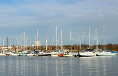 Fareham Creek (Rory Llowarch) Tags: creek creeks farehamcreek farehamlake sunshine sun sunny winter january january2017 winter2017 fareham farehamhampshire hampshire farehamengland hampshireengland england sky skies blueskies bluesky clouds cloud boat boats boating yachts yachting yacht walks royllowarch llowarch parks pretty natural outside outdoor marina marinas farehammarina water watersports tidal uk greatbritain pastimes hobbies hobby color colour colourful colorful lake lakes cold countrywalks countryside towns markettowns