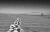 Winter-4 (christian.oberrauch) Tags: schnee winterlandschaft snow bw black white