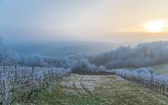 Zagorje (28) - frost (Vlado Ferenčić) Tags: veternica frost zagorje winter hrvatskozagorje hrvatska croatia nikond600 nikkor357028