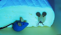 Say Cheese! (G_E_R_D) Tags: macromondays saycheese cheese käse camembert maus mouse