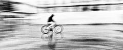 A vélo, Turin (www.jmcougourdan.com) Tags: hasselblad xpan analog trix400 kodak streetphotography filé grain vélo bw italie turin ishootfilm filmisnotdead