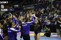 2017-02-11 UW vs ASU 133 (Susie Boyland) Tags: gymnastics uw huskies washington