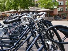 Bikes in Nijmegen (mdarowska) Tags: city holland netherlands dutch bike nijmegen europe thenetherlands bikes nl visitholland