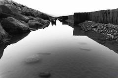 North Wales (jonnyshire) Tags: colour beach monochrome wales golden sand rocks sony slide study hour alpha drama abersoch harlech bleached lightroom llyn a5000 vsco vscofilm