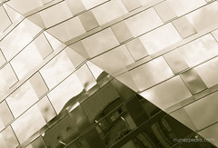 Reflection (Pedro Nez) Tags: reflection architecture photography freiburg freiburgimbreisgau pedronunez