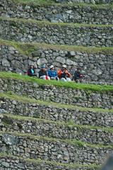 Peru-8545.jpg (Matt and Debbie) Tags: peru 2015 wayna winaywayna wiay