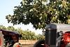 IMG_0365 (ACATCT) Tags: old españa tractor spain traktor agosto toledo antiguo massey pistacho tembleque barreiros 2015 bustards perdices liebres avutardas ff30ds r350s