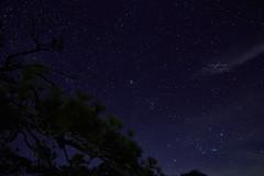 กล า ง ว ั น ไ ม ่ ส ู ้ (snksinicksink192) Tags: phukradueng loei thailand traval travalphoto star sky night