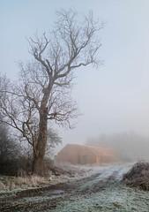 Barns - Mid-Winter - EOS-M (Pixelda) Tags: pixelda kirkby fleetham