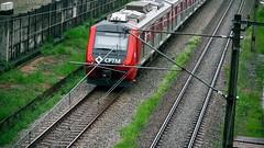 CPTM 2 (Laércio Souza) Tags: sentidodavida caminho cptm trem trilho laerciosouza rolesp saopaulo brasil guilherminaesperanca vilaesperanca
