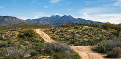 Four Peaks  DSC_0027 (subgenius1) Tags: absolutelystunningscapes