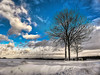 Winter landscape (GerWi) Tags: winter 2017 himmel sky blau schnee snow white snowdunes baum tree landscape outdoor pflanze