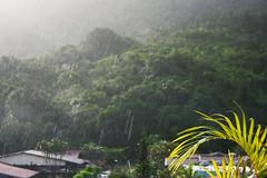 Sunny or Rainny I (Klauss Egon) Tags: ubatuba toninhas rain sunny rainny chuva sol tarde canon brasil brazil beach house