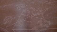 Zdjęcie linii Nazca | Nazca Lines picture