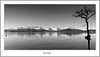 Winter Panorama At Millarochy (flatfoot471) Tags: 2016 balmaha bendubh blackwhite landscape lochlomond millarochybay panoramic scotland stirlingshire unitedkingdom winter