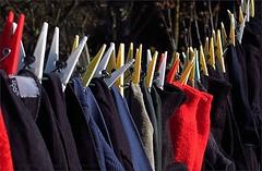 My Winter Washing Day (Konny ;-))) Tags: clothespins wäscheklammern mollette pincesàlinge pinzasderopa prendedoresderoupa wasknijpers klesklyper pyykkipojat tøjklemmer klädnypor wäscheleine clothesline lignedevêtements cordeàlinge tendedero cuerdaparatenderropa varal