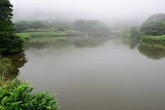 DSC_7817 (ppeng@yahoo) Tags: nikon taipei yangmingshan 2470 d810 陽明山二子坪