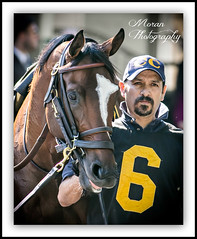 Tonalist (EASY GOER) Tags: horses horse ny newyork sports race canon track running racing 5d athletes races thoroughbred equine thoroughbreds clement belmontpark markiii