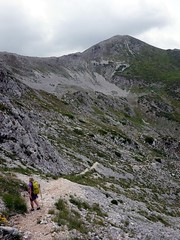 """Descending the trail into Valle Cerchiata • <a style=""""font-size:0.8em;"""" href=""""http://www.flickr.com/photos/41849531@N04/19722648856/"""" target=""""_blank"""">View on Flickr</a>"""