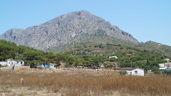 DSC04749 (villeveta) Tags: mountain berg thistle donkey mediterraneansea kalymnos odysseus aegeansea medelhavet masouri telendos tistel sna egeiskahavet mirties velivilppu