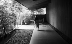 Nezu (randhirsingh) Tags: japan museum architecture tokyo bamboo kimono nezu