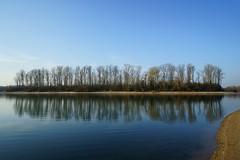 Insel im Altrhein (Lutz Blohm) Tags: reflektionen altrheinarm rhein naturfoto natur insel spiegelung sonyfe2470f4zeiss sonyalpha7aii
