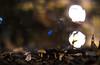 Mushroom @ 1.2 (::Lens a Lot::) Tags: mushroom 12 nippon kogaku japan nikkors 55mm f12 1969   7 blades iris nikon paris 2016 bokeh depth field color vintage manual classic japanese fixed length prime lens night light profondeur de champ