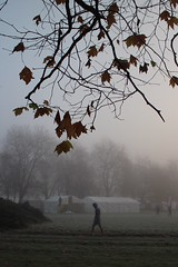 walk it off (Towner Images) Tags: seftonpark walk brisk clear head air cleanse morning mist fog tent park towner liverpool england merseyside autumn