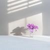 (Elizabeth_211) Tags: stilllife flower shadow 2470mm purple white