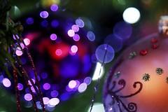 Happy Holidays (Rod Anzaldua) Tags: holidays christmas lights fiestas navidad luces bokeh macro macromonday monday redux2016myfavoritethemeoftheyear