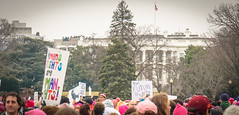 2017.01.21 Women's March Washington, DC USA 2 00146