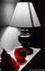 Red Selective Color (BrandonBoone) Tags: red lamp selective color blackandwhite