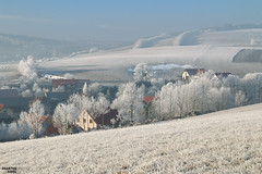 Winter Frostyland (martin_king.photo) Tags: winterfrostyland frosty frost frozen winterwonderland winter trees tree frostytrees wonderland vysocina white waves agriculture agricultural welovelandscape athinkingplace thinking place field beautiful beauty curvesofhighlands fields curves landscape shadows wave martin king photo weather clouds cloudyday farming agriculturallandscape nature countryside treestreestrees highlands