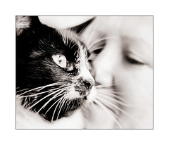 "My Twin Sister & her cat ""Little Girl"" (Missy Jussy) Tags: family cat portrait catportrait girl whiskers mono monochrome blackwhite blackandwhite bw canon canon5d"