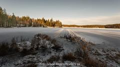 20170113099688 (koppomcolors) Tags: koppomcolors håltebyn värmland varmland sweden sverige scandinavia