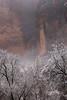 aabshaar (T N K) Tags: zion utah national park nps mist trees snow cliffs canyon art