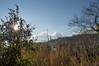 Ψίνθος (Psinthos.Net) Tags: ψίνθοσ psinthos winter january ιανουάριοσ γενάρησ χειμώνασ φύση εξοχή nature countryside sky bluesky γαλάζιοσουρανόσ ουρανόσ σύννεφα νέφη clouds mountain βουνό πεύκοι πεύκα δάσοσ forest pinetrees trees δέντρα πλατάνοι πλάτανοι πλατάνια planetrees treebranches κλαδιάδέντρων κλαδιάδέντρου tree δέντρο πλάτανοσ planetree καλάμια καλαμιέσ reeds stubbles φώσ light sunlight φώσήλιου φώσηλίου κορμόσδέντρου treetrunk houses σπίτια κοιλάδα κοιλάδαψίνθοσ κοιλάδαψίνθου psinthosvalley fasoulivalley κοιλάδαφασούλι ήλιοσ sun sunrays αχτίνεσήλιου θάμνοσ κλαδιά shrub branches σκιά shadow φύλλα leaves άγριοσκισσόσ wildivy winterleaves φύλλαχειμώνα χειμωνιάτικαφύλλα