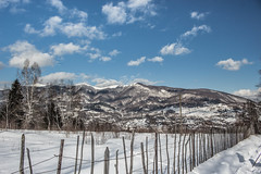 Mountains of snow (H.I.P.) Tags: landscape winter snow mountains fence old
