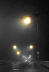 Fog lights (siong.lewis) Tags: urbanphotography urban roadway streetscape fog night streetlight cityscape toronto
