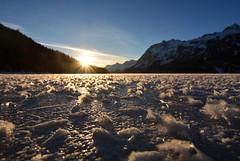 Gelo (supersky77) Tags: frost crystal cristallo ghiaccio brina ice lake lago icy frozen cold freddo ghiacciato engadina engiadina engadin silvaplana sils tramonto sunset svizzera switzerland schweiz suisse alpi alps alpes alpen