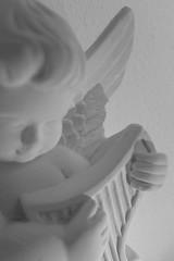 macro monday BW angel (carloancona) Tags: macromondays bw