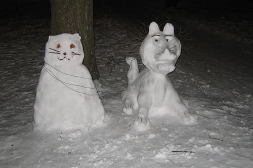 Lion & Cat #3