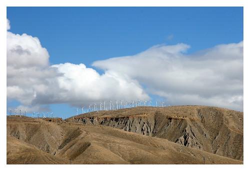 Hillside of Windmills