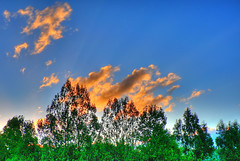 Orange Clouds HDR (Brenda Anderson) Tags: sky orange clouds saturated hdr curiouskiwi photomatix brendaanderson curiouskiwi:posted=2006