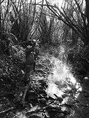 fun with water no.3 (Vincenzo Elviretti) Tags: river fiume bellegra cona grotte dellarco schizzi acqua water spensieratezza felicità gioventù anni felici bastone sassi alberi foresta adolescenza campagna rurale
