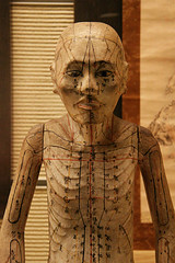 Acupuncture doll