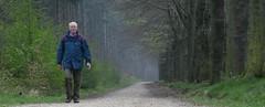 Hiking with Sr (Harry Mijland) Tags: holland netherlands dutch bomen hiking path wandelen pad nederland thenetherlands boom sr amerongen utrechtseheuvelrug dearharry harrymijland