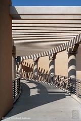 UNM Trellis (JMichaelSullivan) Tags: newmexico mamiya architecture trellis unm m7 mamiya7 mjsfoto1956 1000v